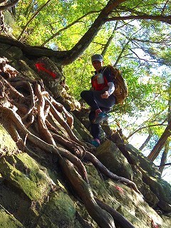 Baum 香り三昧-13