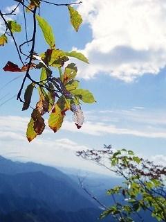 Baum 香り三昧-15