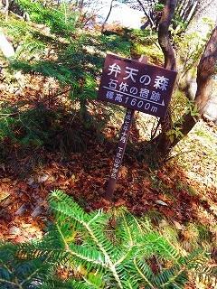 Baum 香り三昧-14