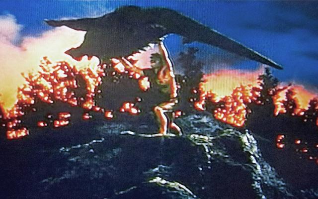 バラゴンを投げ飛ばす怪人