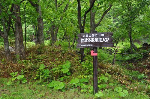 hokkaidou20150610001_R.jpg