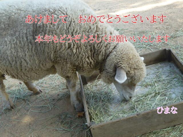 RkEb4iISGeS1n3B1420117568_1420117926.jpg