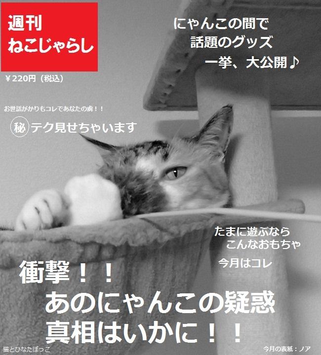 20150618_雑誌