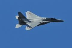 Hyakuri AB_F-15J_363