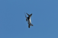 Hyakuri AB_F-4EJ_366