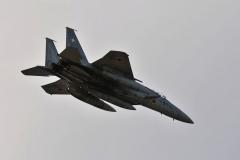 Hyakuri AB_F-15J_367