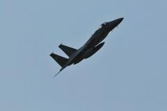 Hyakuri AB_F-15J_368