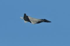 Hyakuri AB_F-15J_375
