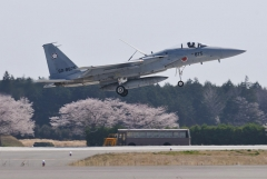 Hyakuri AB_F-15J_403
