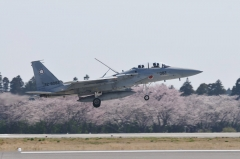 Hyakuri AB_F-15DJ_56