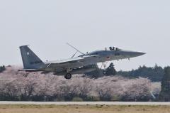 Hyakuri AB_F-15J_405