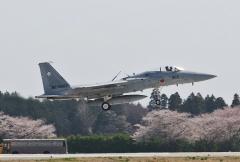 Hyakuri AB_F-15J_410