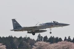 Hyakuri AB_F-15J_408