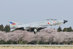 Hyakuri AB_F-4EJ_393