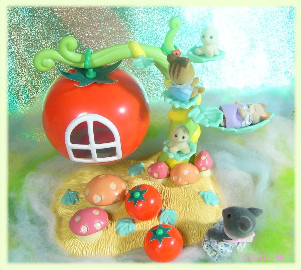 眠りの森のトマト 3