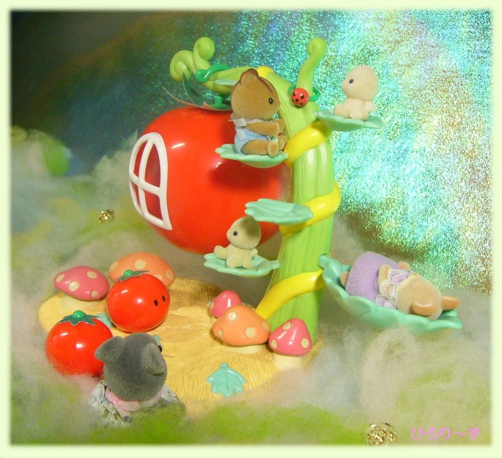 眠りの森のトマト 4