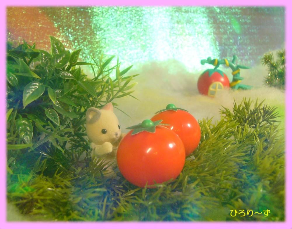 眠りの森のトマト ストーリーカード 3