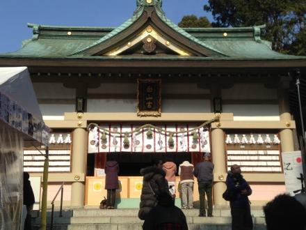 150104hatsumoude (5)
