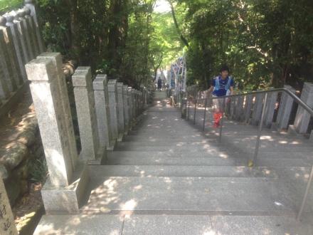 150425hatobukiyamatrailrunning (6)