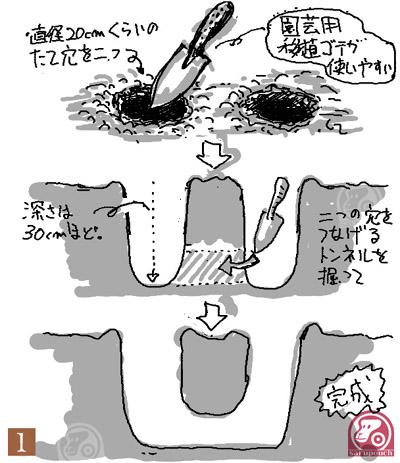 saru_D1.jpg