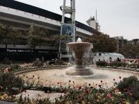 1504横浜公園