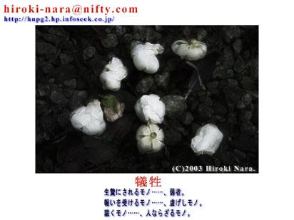 FLOWERS0305F