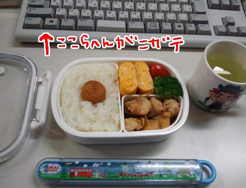 0331lunchbox.jpg