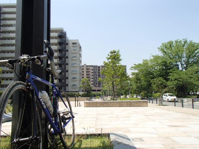 朝練Ⅱ (19)