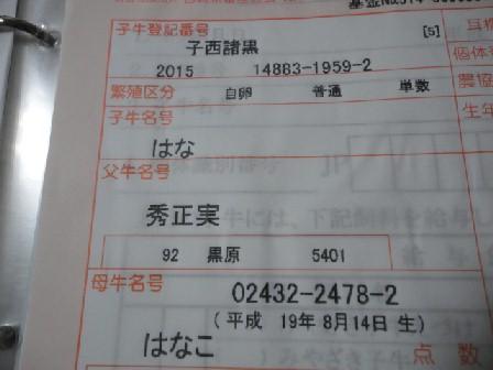 DSC065881.jpg