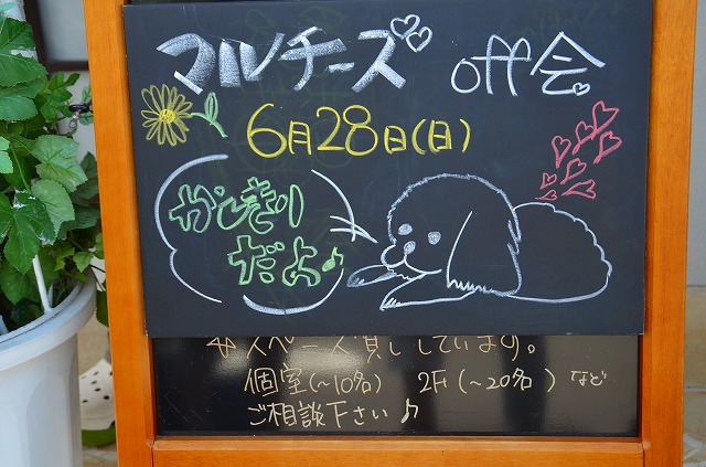DSC_7734.jpg