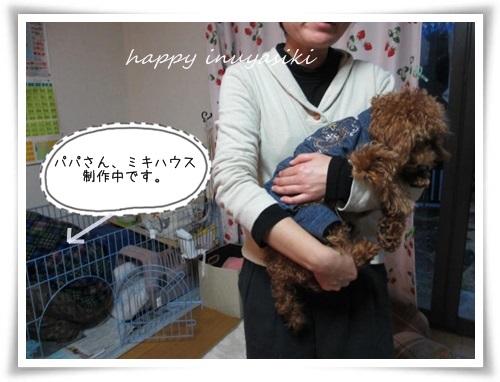 mini2IMG_0030 (2)-20141221