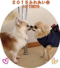 ふれあい会20150206-200