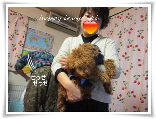 mini2IMG_0033-20141221.jpg
