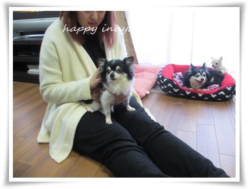 mini2IMG_0067-20150405.jpg