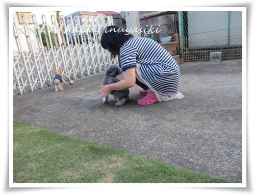 mini2IMG_0123-20150429.jpg