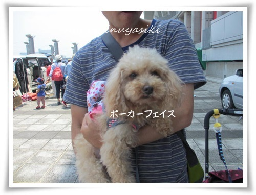 mini3IMG_0055-20150614.jpg