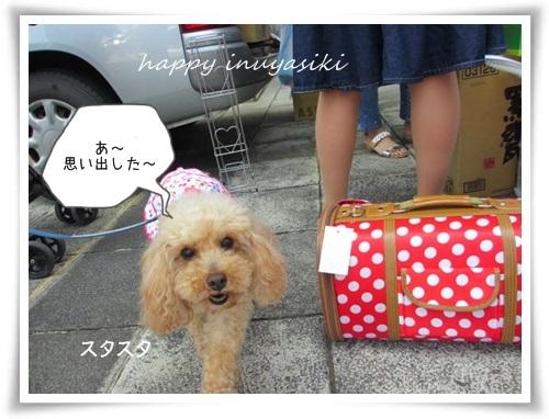 mini3IMG_0058-20150614.jpg
