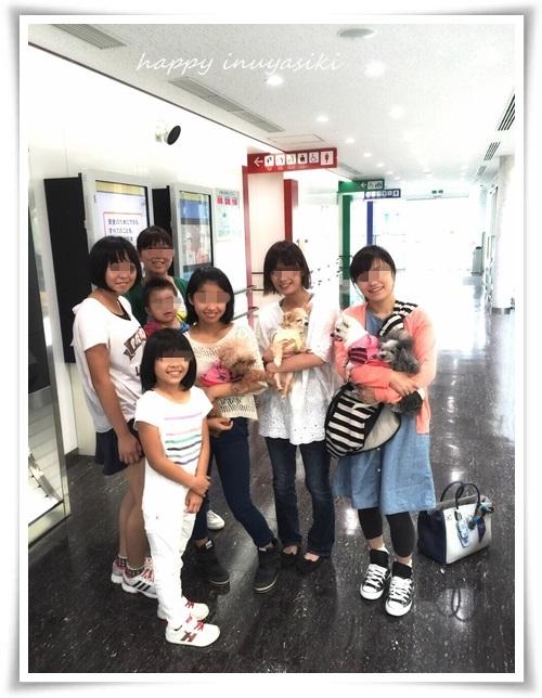 mini3IMG_0154-20150622.jpg