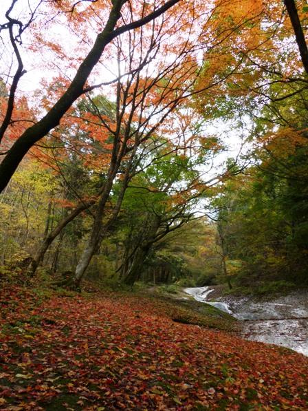 滑川渓谷 紅葉 4