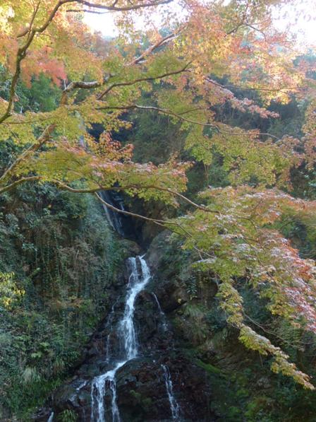 白滝公園 紅葉 9