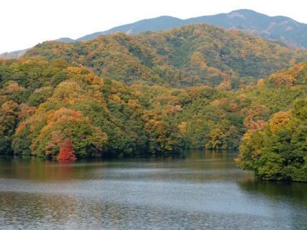 石手川ダム・白鷺湖 4