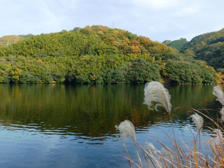 石手川ダム・白鷺湖 2