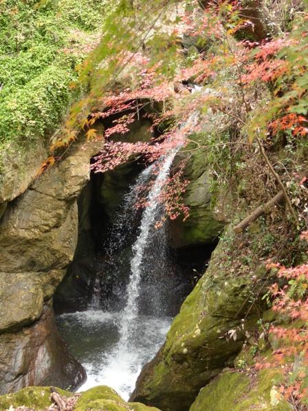 夫婦岩公園 紅葉 6
