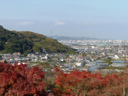 愛媛県総合運動公園 紅葉 4