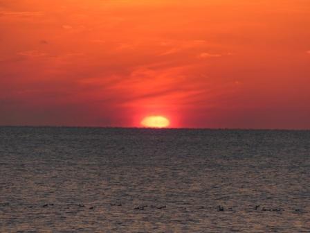 塩屋海岸 夕景 11