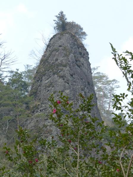 椿と礫岩峰
