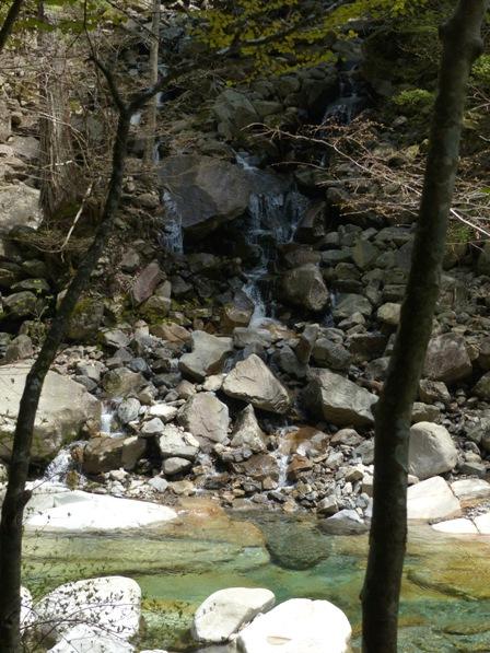 面河渓 2