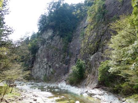 面河渓 11