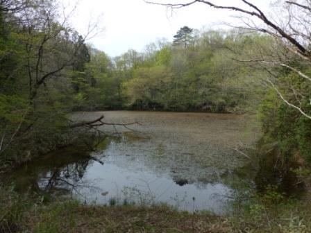 赤蔵ヶ池 1