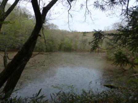 赤蔵ヶ池 2